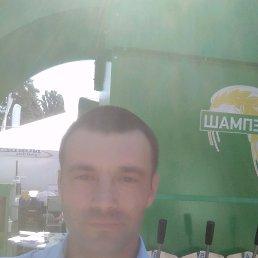 Ruslan, 34 года, Недригайлов