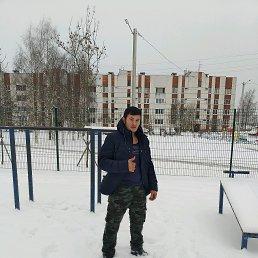 БЕК, 25 лет, Павловск