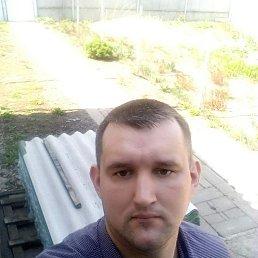 Евгений, 28 лет, Белгород