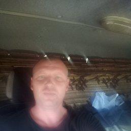 Макс, 36 лет, Камень-на-Оби