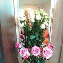 Фото Надежда Сивоченко, Барнаул, 65 лет - добавлено 18 сентября 2019