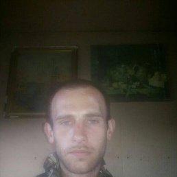Владимир, 29 лет, Кавказская