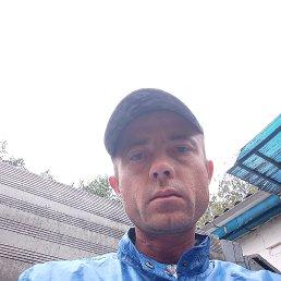 Sergey, 35 лет, Миргород
