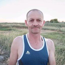 Владимир, 53 года, Двуречная