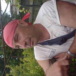 Торквемада, 54 года, Киев