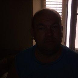 Сергей, 47 лет, Цюрупинск