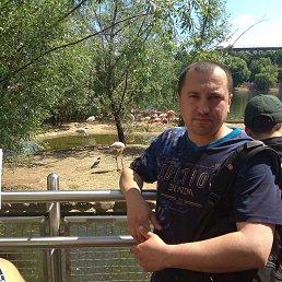 Евгений, 37 лет, Доброполье