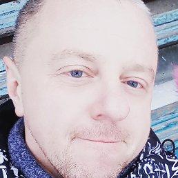Димон, 41 год, Куса