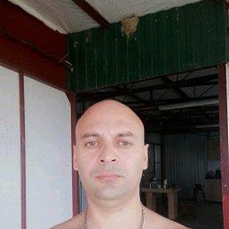 Сергей, 38 лет, Плавск