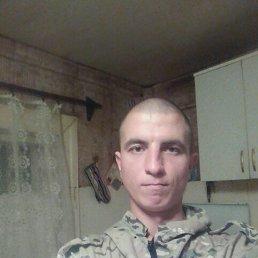 Александр, 30 лет, Викулово