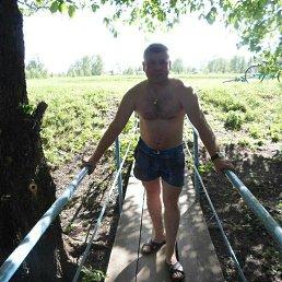 Илья, 36 лет, Талдом