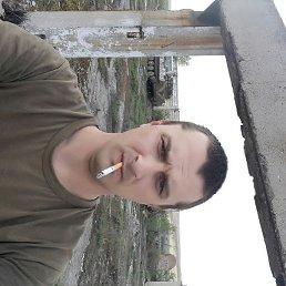 Денис, 33 года, Умань