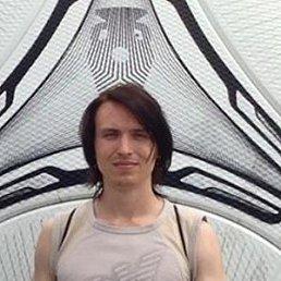 Дмитрий, 28 лет, Житомир