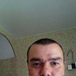 Николай, 35 лет, Кировск