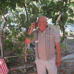 Анатолий, 61 год, Ижевск