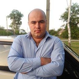 Николай, 28 лет, Умань
