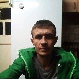 Андрей, 36 лет, Куровское