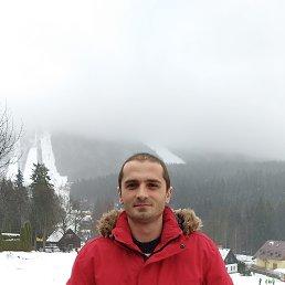 Михаил, 29 лет, Житомир