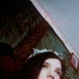 Даша, 24 года, Житомир