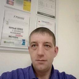 Иван, 39 лет, Завьялово