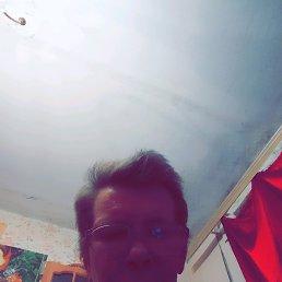 Алексей, 53 года, Ржев