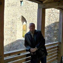 Анатолий, 59 лет, Винница