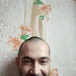 Олег, 36 лет, Приморск