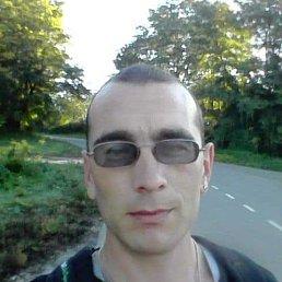 Михаил, 28 лет, Умань
