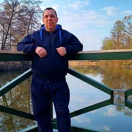Алексей, 41 год, Котовск
