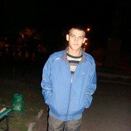 Alex, 28 лет, Северодонецк