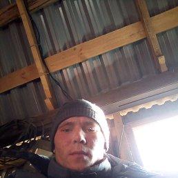 Александр, 24 года, Липецк