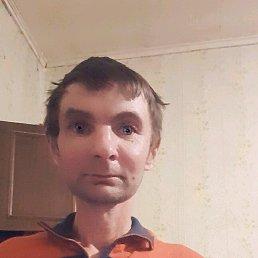 Олег, 42 года, Малая Вишера