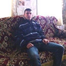 Женя, 33 года, Тарасовский