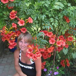 наталья, 37 лет, Кострома