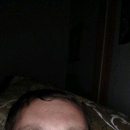 Михаил, 39 лет, Бронницы