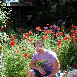 Игорь, 28 лет, Одинцово