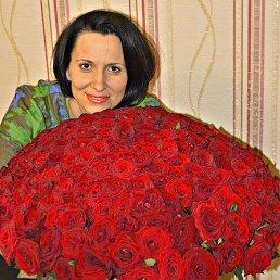 Наташа, 38 лет, Ижевск