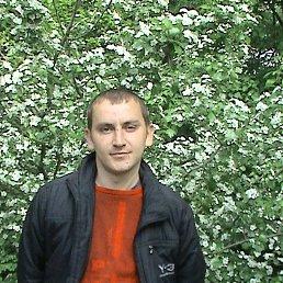 Фото Олександр, Киев, 38 лет - добавлено 13 февраля 2020