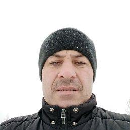 Марат, 38 лет, Белев