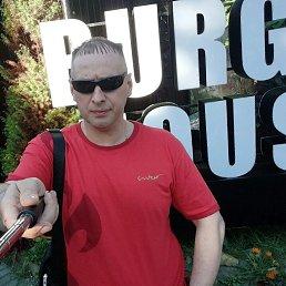 Анатолий, 44 года, Карабаш
