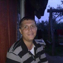 Роман, 36 лет, Южноукраинск