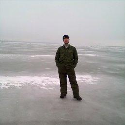 Вася, 34 года, Сосновоборск