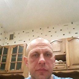 Максим, 39 лет, Бутово