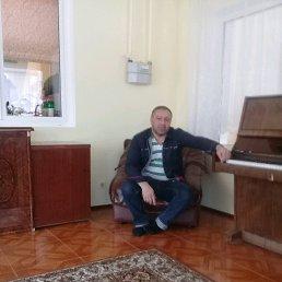 Kamil, 39 лет, Молоково