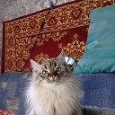 Фото Лана, Уфа - добавлено 7 апреля 2020