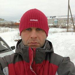 Рома, 39 лет, Киров