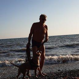 Михаил, 59 лет, Ковдор