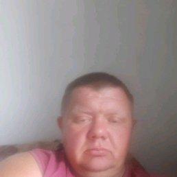 Сергей, 37 лет, Камень-на-Оби