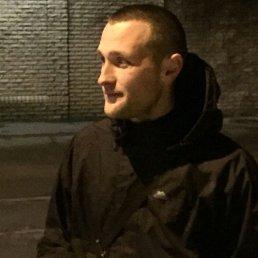 Андрей, 29 лет, Запорожье