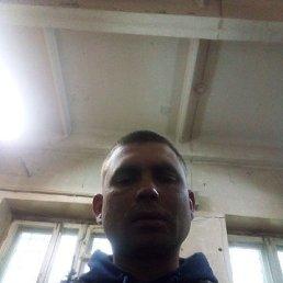 Сергей, 30 лет, Северск